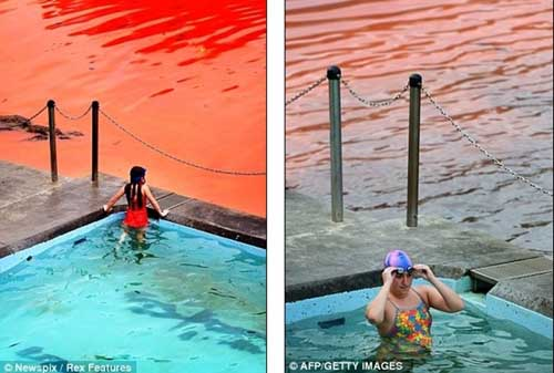 Nước biển chuyển thành màu đỏ như máu - 8
