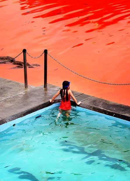 """Đóng cửa biển """"máu"""" ở Sydney - 3"""