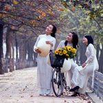 Du lịch - 8 địa điểm chụp ảnh đẹp ở Hà Nội