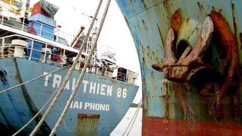 TP.HCM: Cảng quốc tế hàng trăm tỷ hoang tàn - 6