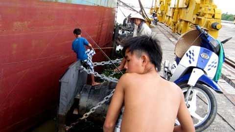 TP.HCM: Cảng quốc tế hàng trăm tỷ hoang tàn - 7