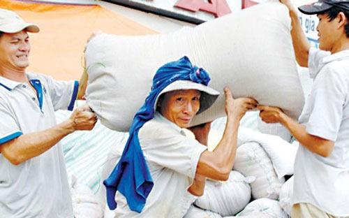 Xuất khẩu gạo sắp phá kỷ lục năm 2011 - 1