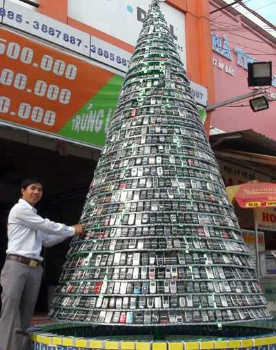 Những cây thông kỳ lạ tại Việt Nam - 3