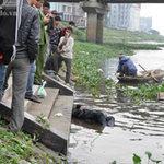 An ninh Xã hội - Xác người bị buộc gạch, trôi nổi dưới sông
