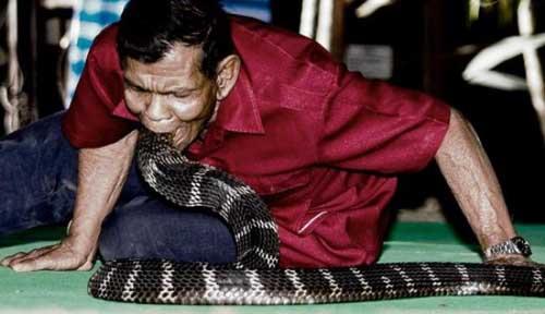 """Ngôi làng người và rắn là """"bạn thân"""" - 1"""