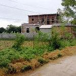 Tài chính - Bất động sản - HN: Đất nông thôn thấp nhất 350.000 đồng/m2