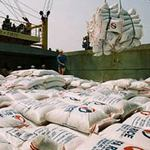Tài chính - Bất động sản - Kinh tế Việt Nam 2013 theo kịch bản nào?