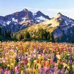 Du lịch - 10 công viên quốc gia đẹp nhất nước Mỹ