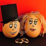 Tin vịt: Sau ngày tận thế người đẻ trứng