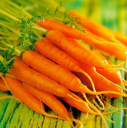 6 thực phẩm vàng giúp tránh thai - 1