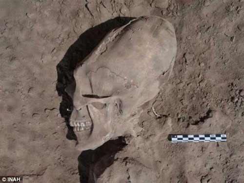 """Phát hiện sọ """"người ngoài hành tinh"""" ở Mexico - 1"""