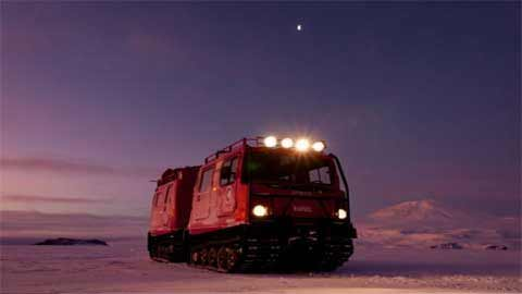 Ngắm hàng nghìn bông hoa băng ở Bắc Cực - 5
