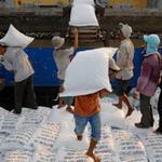 Thị trường - Tiêu dùng - Năm 2013, thị trường xuất khẩu gạo sẽ bị thu hẹp