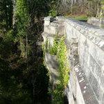 Phi thường - kỳ quặc - Cây cầu tự sát bí ẩn ở Scotland