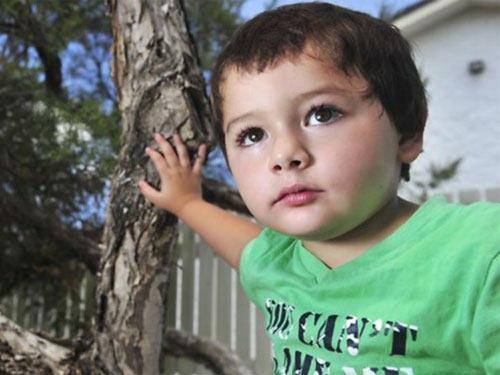 """Úc: Bé trai """"nuôi"""" 7 con rắn độc trong tủ áo - 1"""