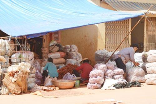 Đủ chiêu đưa rau củ Trung Quốc vào chợ - 1