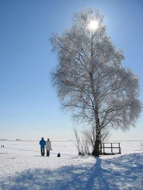 10 thiên đường tuyết trắng tuyệt đẹp - 11