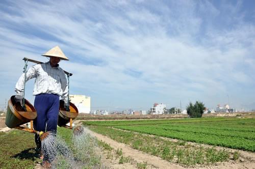 Mở lối cho nông sản - 1