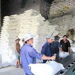 Thị trường - Tiêu dùng - Giá gạo xuất khẩu VN tăng nhờ... Trung Quốc