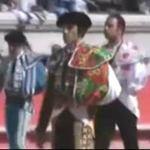 Thể thao - Video: Màn đấu bò của năm 2012