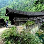 Phi thường - kỳ quặc - Cầu gỗ nghìn năm tuổi kiên cố lạ thường