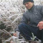 Tin tức trong ngày - Tết dương lịch, Việt Nam có thể có tuyết