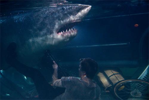 Rùng rợn vì Bẫy cá mập 3D - 5