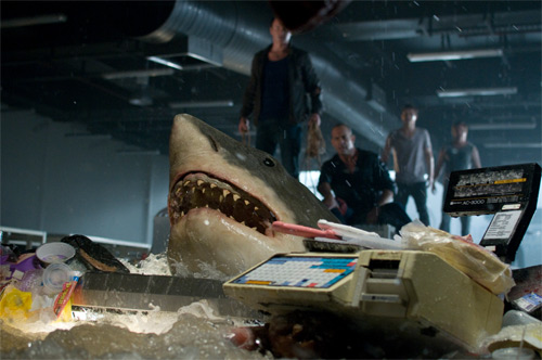 phim bẫy cá mập