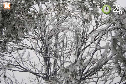 Băng tuyết phủ trắng Sa Pa ngày cuối năm - 1