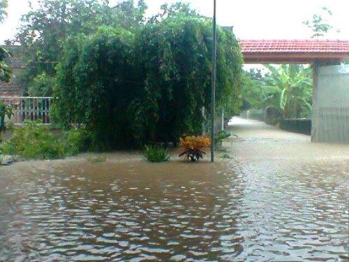 Nghệ An: Xả lũ khẩn cấp, nước ngập nuốt mái nhà - 13