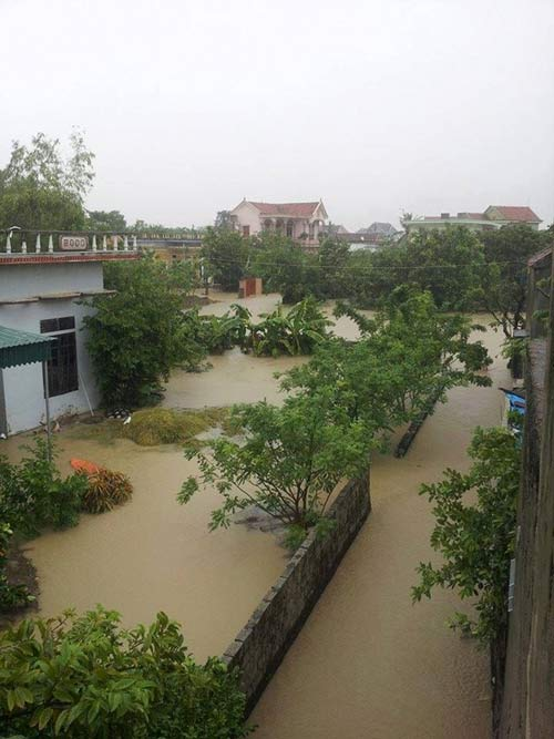 Nghệ An: Xả lũ khẩn cấp, nước ngập nuốt mái nhà - 5