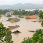 Tin tức trong ngày - Nghệ An: Xả lũ khẩn cấp, nước ngập nuốt mái nhà