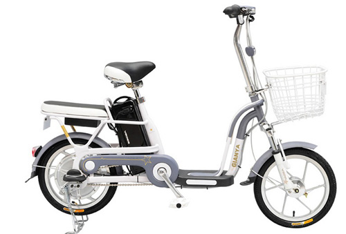 Xe đạp điện Gianya - Lấy khách hàng làm thước đo thương hiệu - 1