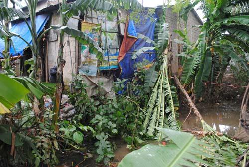 Lợp mái nhà sau bão, bé 14 tuổi tử vong - 1