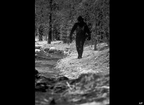 Tranh cãi clip mới về Người Tuyết - 2