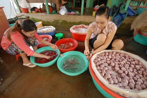Cận cảnh chợ chuột béo mầm ở miền Tây - 13