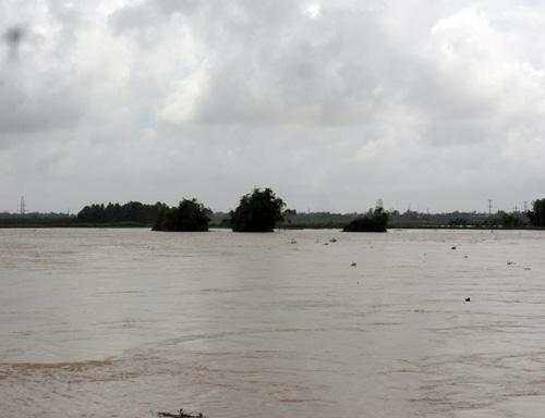 Quảng Nam: Lũ thủy điện bủa vây người dân - 11