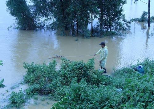 Quảng Nam: Lũ thủy điện bủa vây người dân - 4