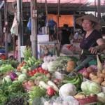 Thị trường - Tiêu dùng - Hà Nội: Kiểm tra giá lương thực, thực phẩm