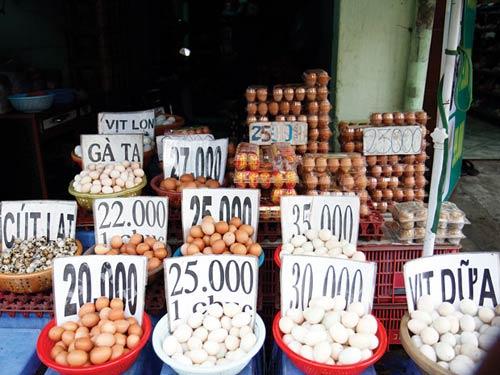 Vì sao giá trứng gia cầm ở chợ gấp đôi ở trại - 1