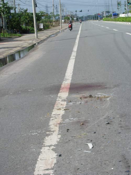Bò lao vào đường phố, gây tai nạn chết người - 1