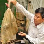 Tin tức trong ngày - Bắt giữ nhiều động vật hoang dã quý hiếm