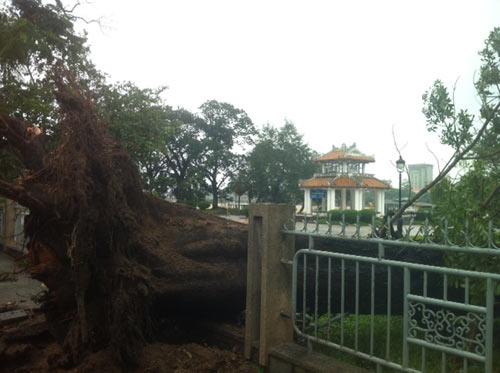 Thừa Thiên Huế: Nước sông Hương dâng cao - 5
