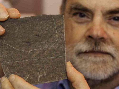 Hóa thạch muỗi 46 triệu tuổi nguyên bụng máu - 2