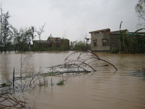 Quảng Bình: Hàng vạn ngôi nhà bị lũ nhấn chìm - 4