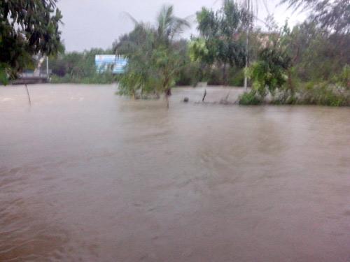 Quảng Bình: Hàng vạn ngôi nhà bị lũ nhấn chìm - 1