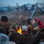 Tin tức trong ngày - Syria: Dân đạo Hồi ở chiến địa được ăn thịt chó