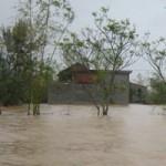 Tin tức trong ngày - Quảng Bình: Hàng vạn ngôi nhà bị lũ nhấn chìm
