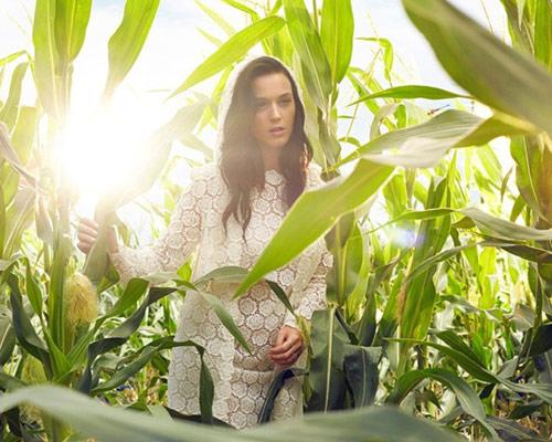 Katy Perry hóa nàng tiên bướm xinh đẹp - 9