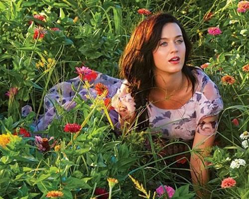 Katy Perry hóa nàng tiên bướm xinh đẹp - 7
